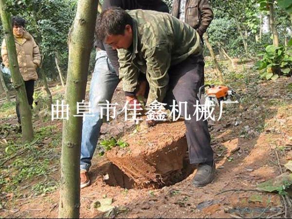 云岩区果树带土球移栽机 链条式刨树机汽油大马力起树机
