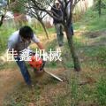 枣庄汽油链条式挖树机大小树木树苗移栽机