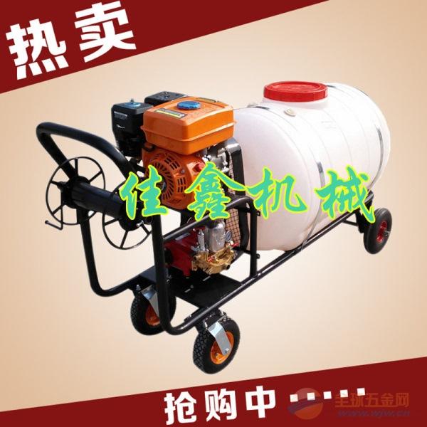 敦化市 手推式喷雾器 推式机动喷雾机