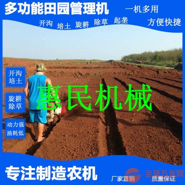 大棚蔬菜种植开垄机 汽油大马力微耕机 红薯起垄机