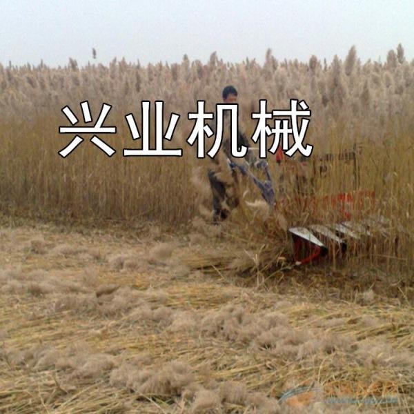 九江玉米秸秆割晒机