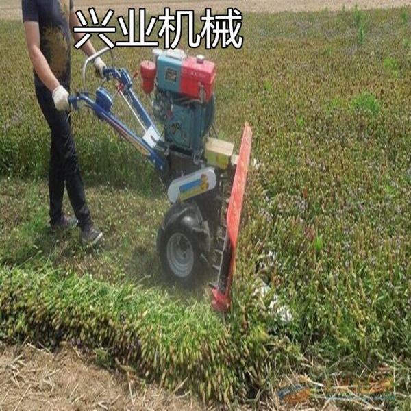 枣庄油菜牧草割晒机厂家