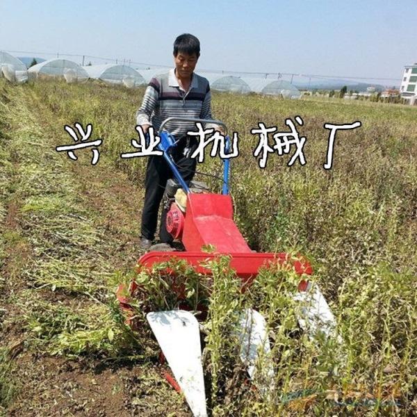 武威大豆秸秆收割机