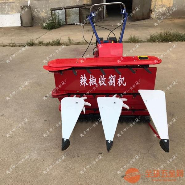 阳江黑麦草收割机辣椒大豆自走收割割晒机图片