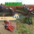 焦作新款小麦收获设备