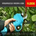 新疆葡萄园专用修枝剪视频