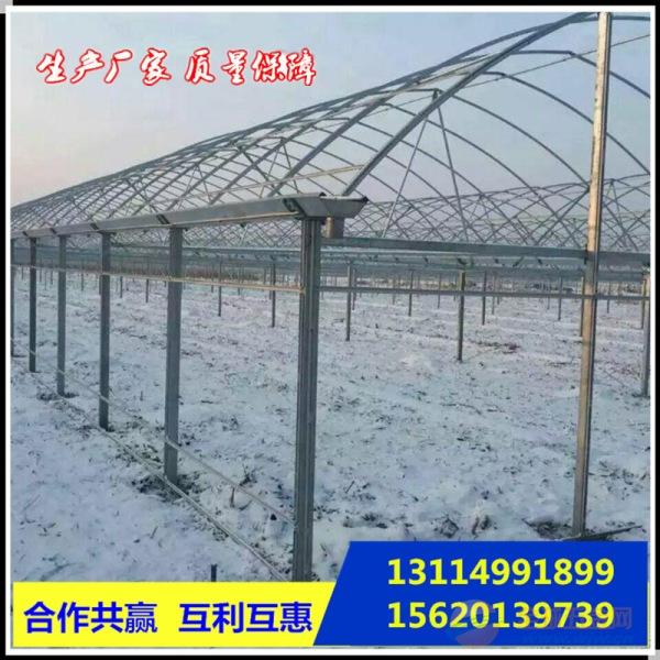 广安6分*2.0大棚管价格大棚管多少钱|天津大棚管厂