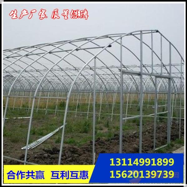 北京大棚管零售大棚管多少钱