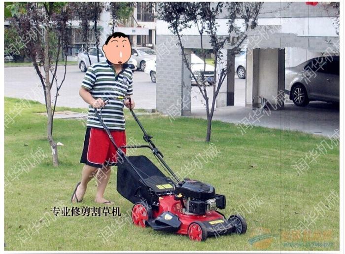 自走式除草机 微型除草机 家用除草机