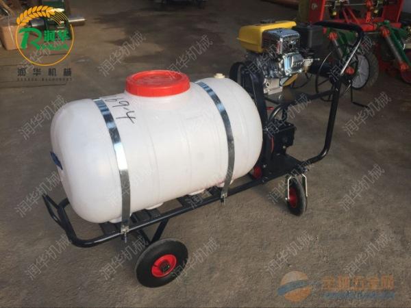高压泵打药机 手推高压喷雾器 农用喷雾器报价