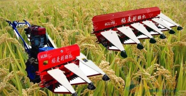 乐清玉米秸秆青储机 小型艾草割晒机
