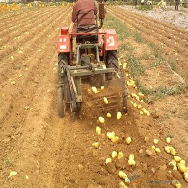 手扶马铃薯土豆收获机手扶马铃薯土豆收获机昆明