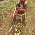 土豆收获机最新批发价格长沙手扶车带土豆薯类收获机