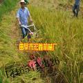 大型苜蓿农场收割机桃城区辣椒割晒机