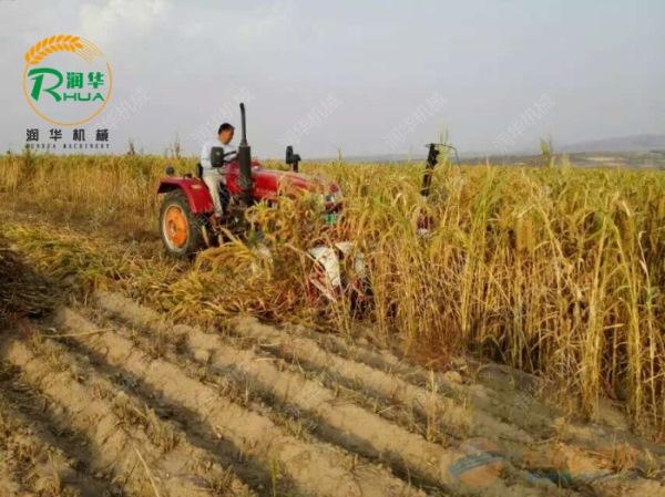 玉米秸秆收割机规格 多功能割晒机厂家