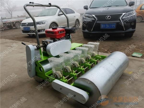 人力蔬菜播种机 汽油蔬菜精播机