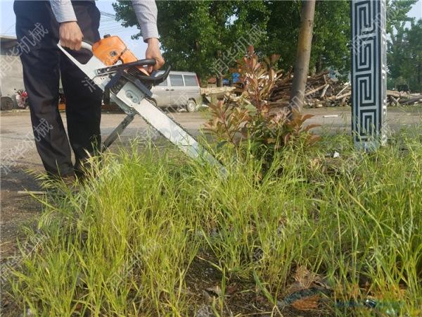 尚义县不伤根系的铲树机盐碱地植树造林铲树机