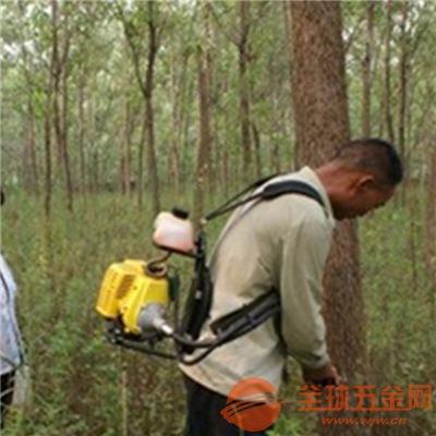 果树小型打药机厂家白山林业树木虫害打药机