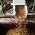 优质高效吸粮机 农用螺旋式吸粮机 两相电大豆吸粮机价格