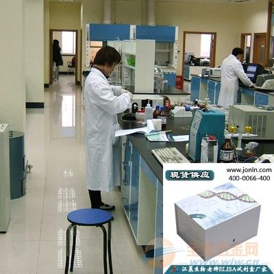 苏云金芽孢杆菌蛋白(BT)ELISA试剂盒(人/大鼠等)