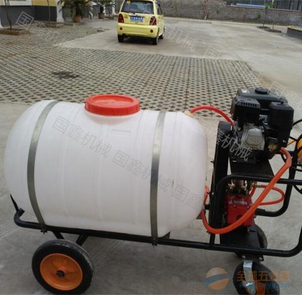 园林果树打药泵 蔬菜大棚喷雾机