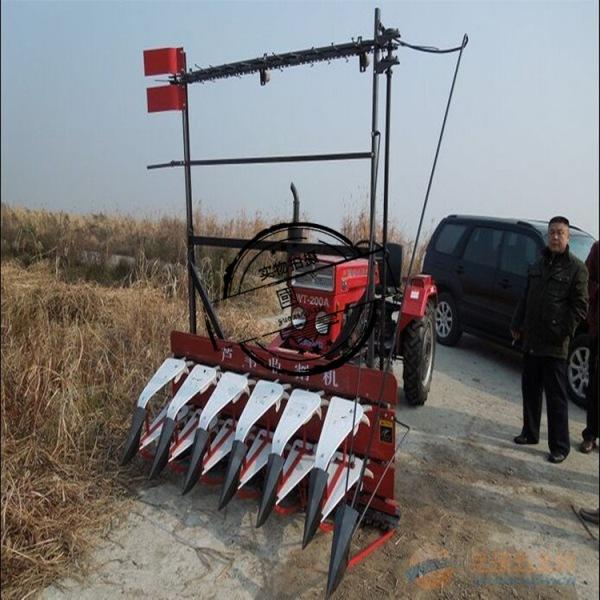 稻麦微型割晒机 交口县 芦苇割晒机收割机