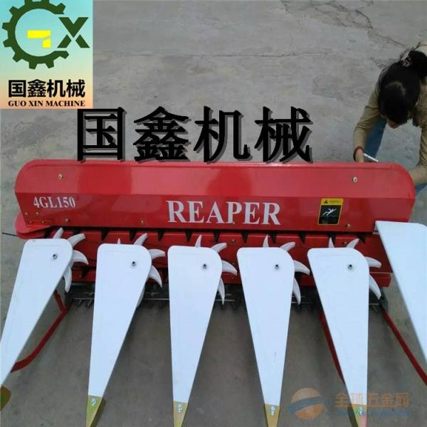 厂家销售小型轻便辣椒收割机 黑山县 高作物秸秆辣椒收