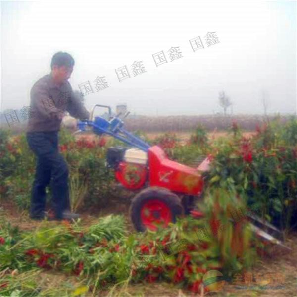茴香收割晾晒机 湾里区 小麦牧草收割机