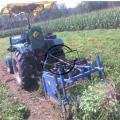 大型土豆收获机 高效自动土豆收获机