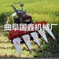 大豆马蹄草收割机 养殖牧草割柳条机视频 手扶带动汽油收割机