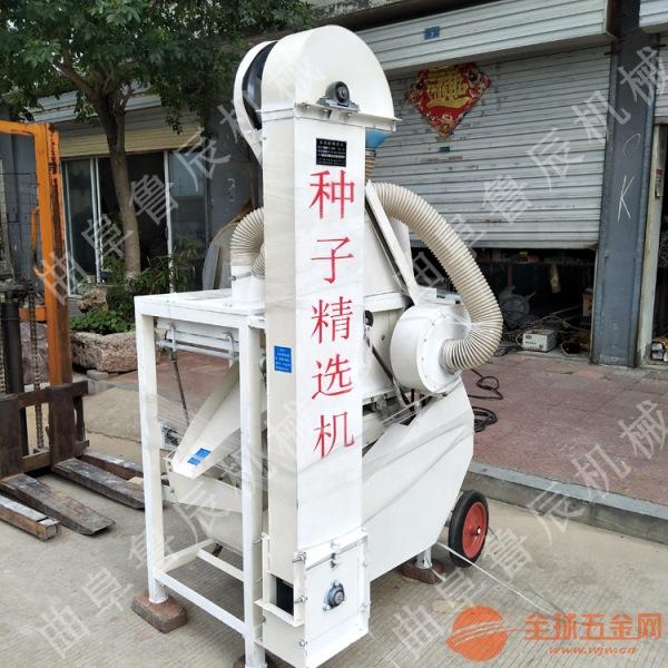 小麦选种机 水稻精选机 电动五谷杂粮精选机供应