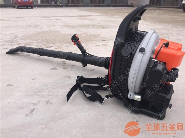 小区吹雪机 临沧大风量吹雪机