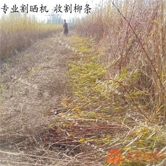清流县小型油菜收割机 水稻小麦收割打捆机