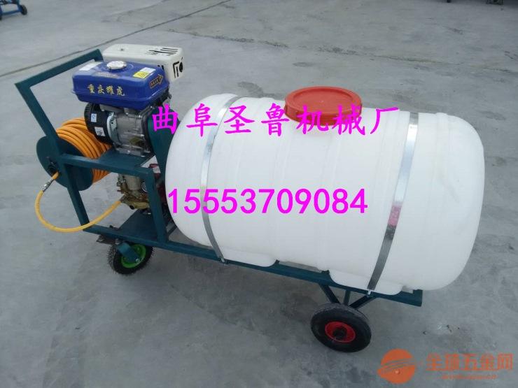 汽油高压喷雾器 家用喷雾器 手推式喷雾器