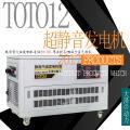 汽油发电机12kw多少钱