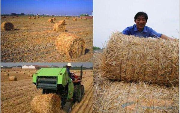 鸡西市水稻秸秆粉碎打捆机生产厂