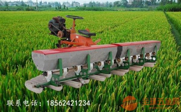 高端水稻种植播种机生产厂家