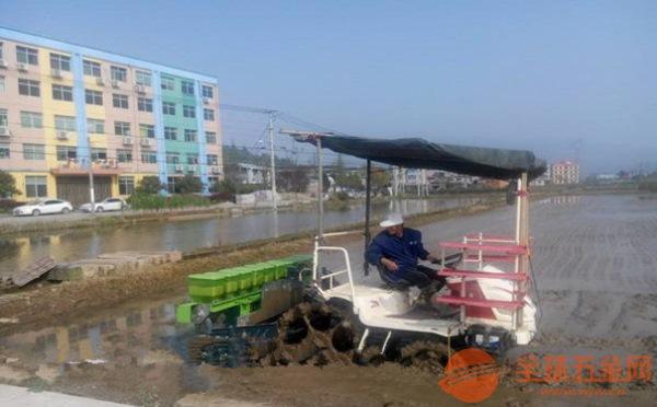 黔西南水稻播种机销售部