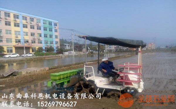 湖北儒兴德沃牌水稻直播机厂家直销