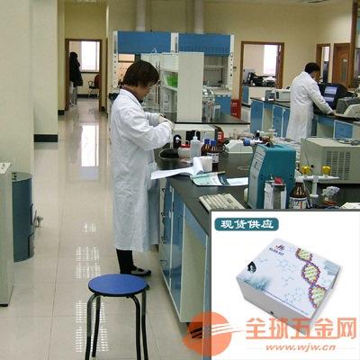 白细胞介素29检测试剂盒大小鼠人等种属完备