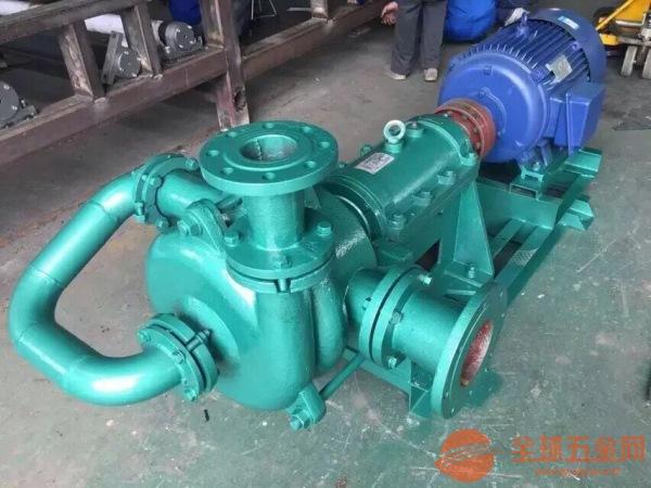 阜南县150SYA75-110压滤机入料泵
