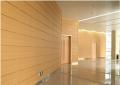 商业大夏墙幕木纹铝单板效果逼真墙幕首选材料