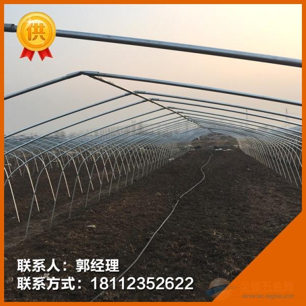 新闻:揭阳大棚管揭阳蔬菜大棚管各种蔬菜温室大棚大量现货
