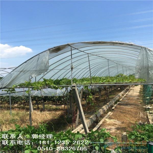 资讯:陕西西安大棚管3米—15米定尺大棚钢管厂