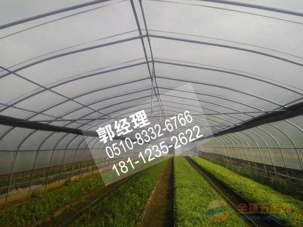 资讯:湖北黄石大棚管3米—15米定尺大棚钢管厂
