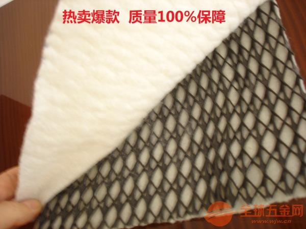 新型排水网防渗三维排水网