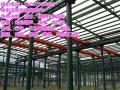 宁德柘荣龙门吊、行车集研发、设计、安装、维修为一体联系方式