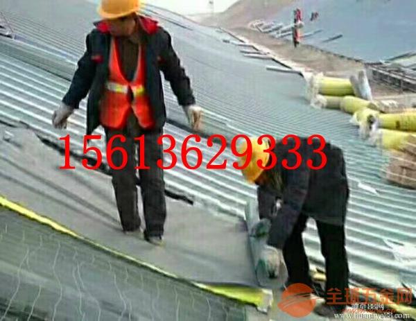 龙飒彩钢顶保温棉轻钢别墅,厂房专用玻璃棉 规格低质量优 品质保证