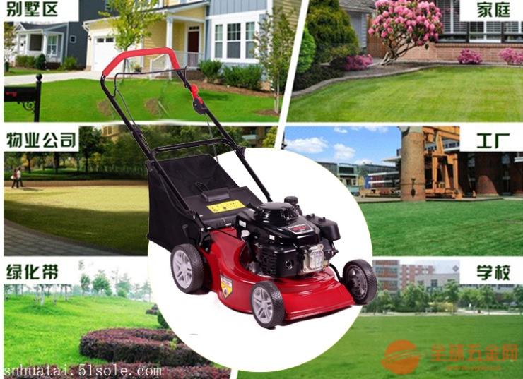 除草神器草坪机除草机械除草机设备手推式草坪机小区草坪机