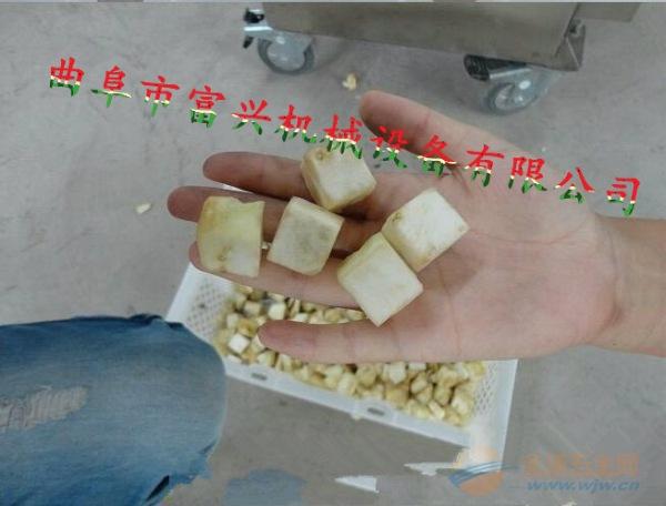 阜阳 酸笋切丝机 萝卜切菜机